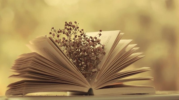 cách ôn thi môn văn thpt quốc gia hiệu quả cao